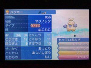 pokemon_sun05_5870