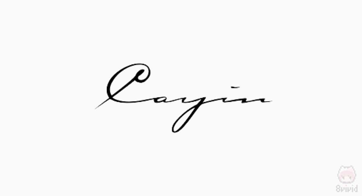 Cayin(中国)