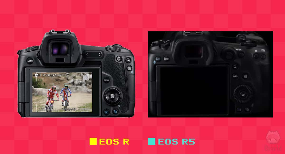 EOS RとEOS R5の背面比較。