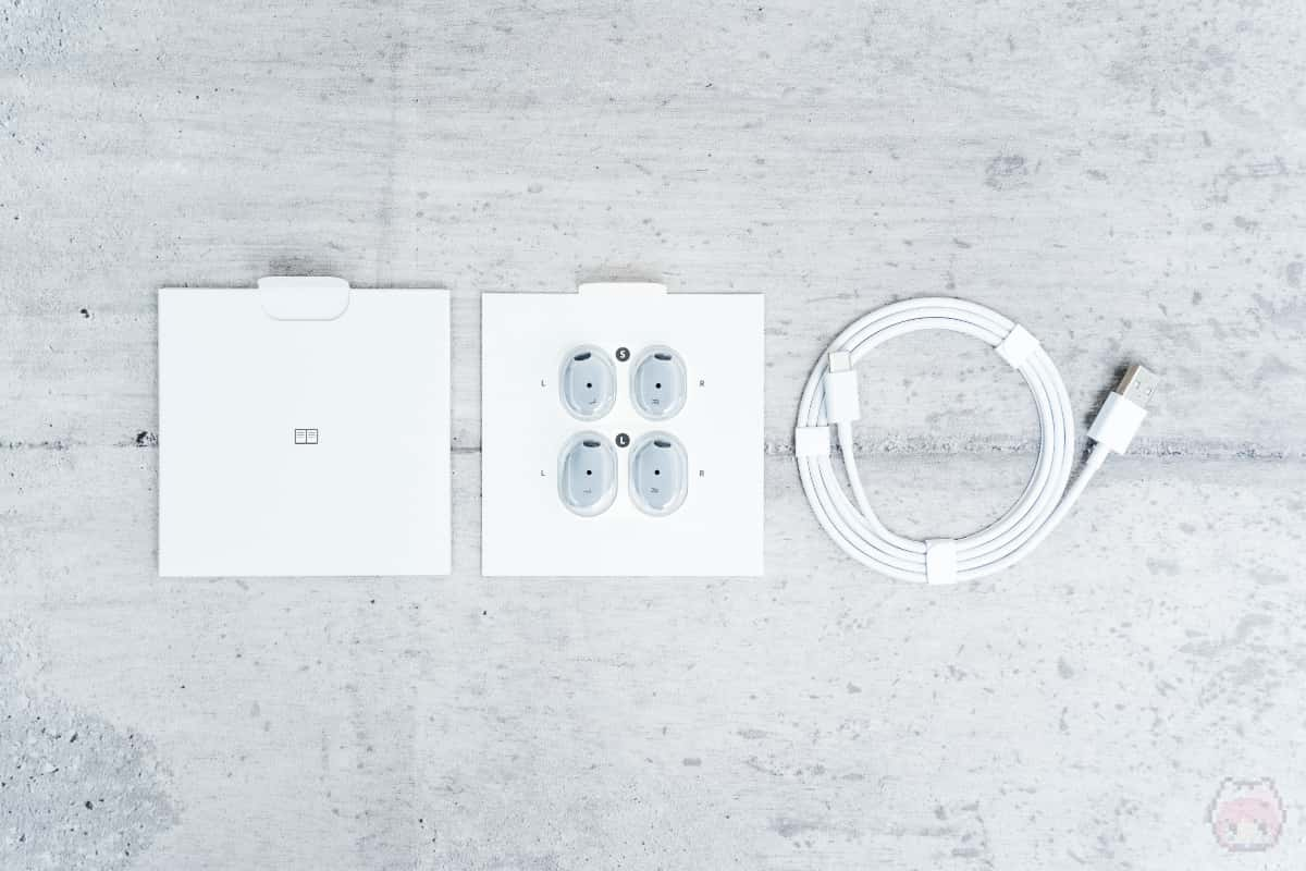 Surface Earbuds付属品。