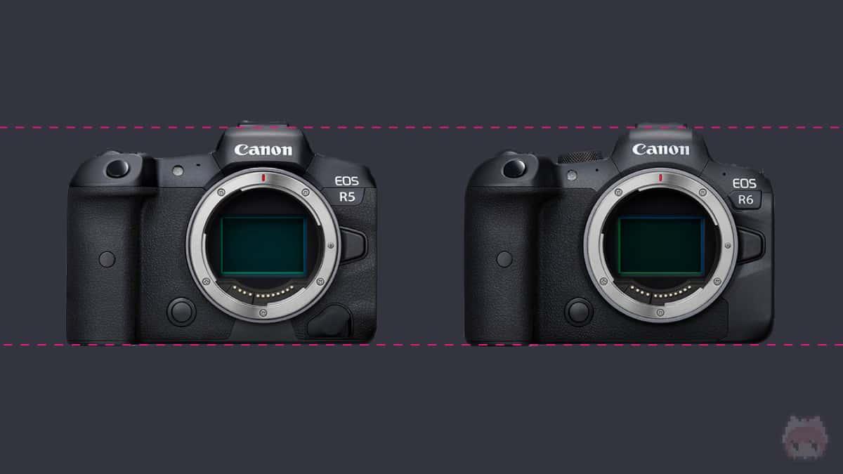 左:EOS R5 右:EOS R6