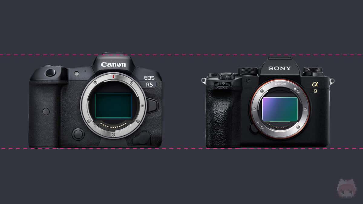 左:EOS R5 右:α9 II
