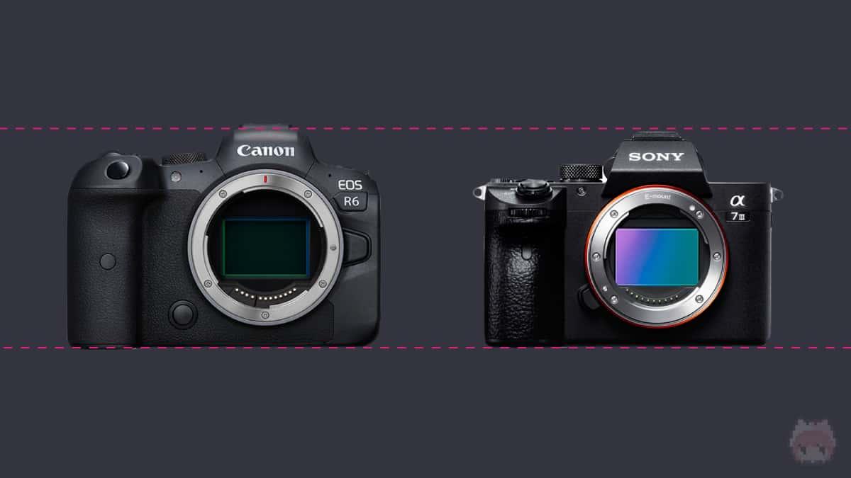 左:EOS R6 右:α7 III