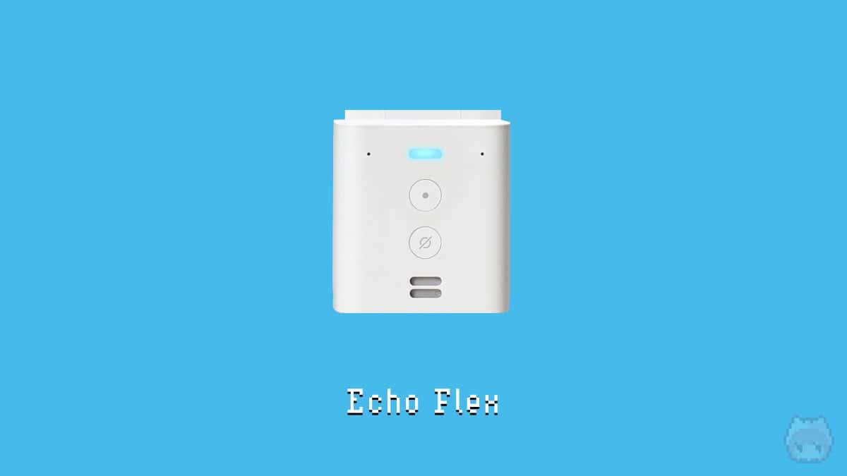 Amazon Echo Flex系
