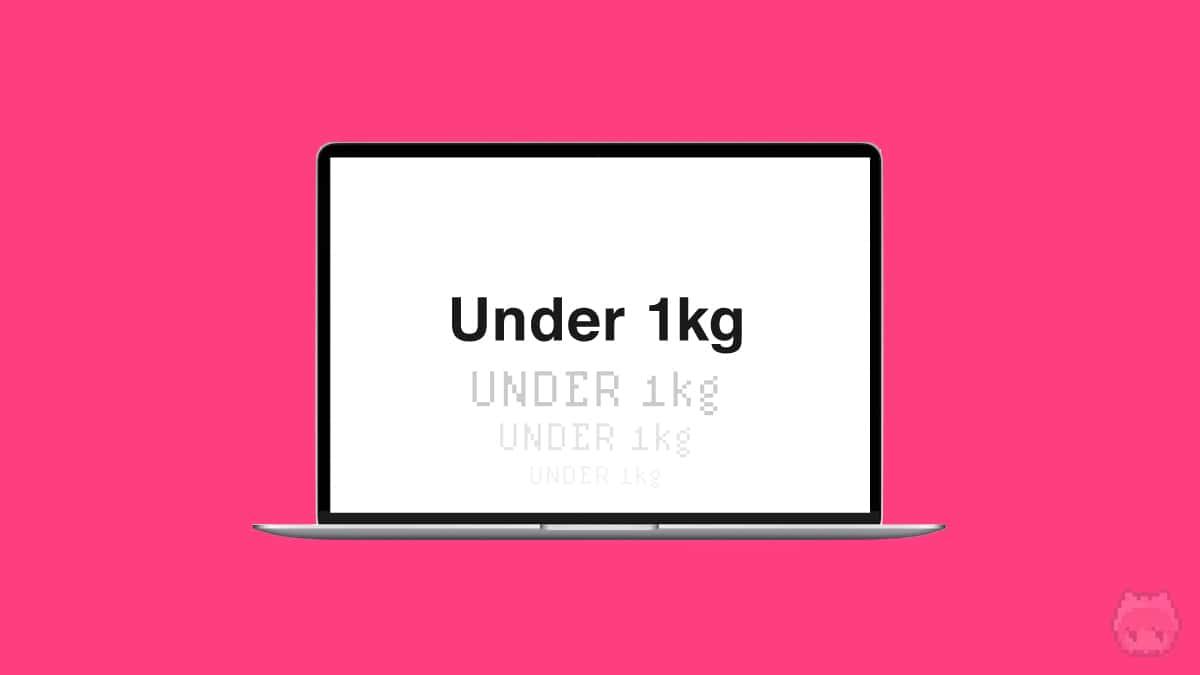 【条件3】質量:1kg未満