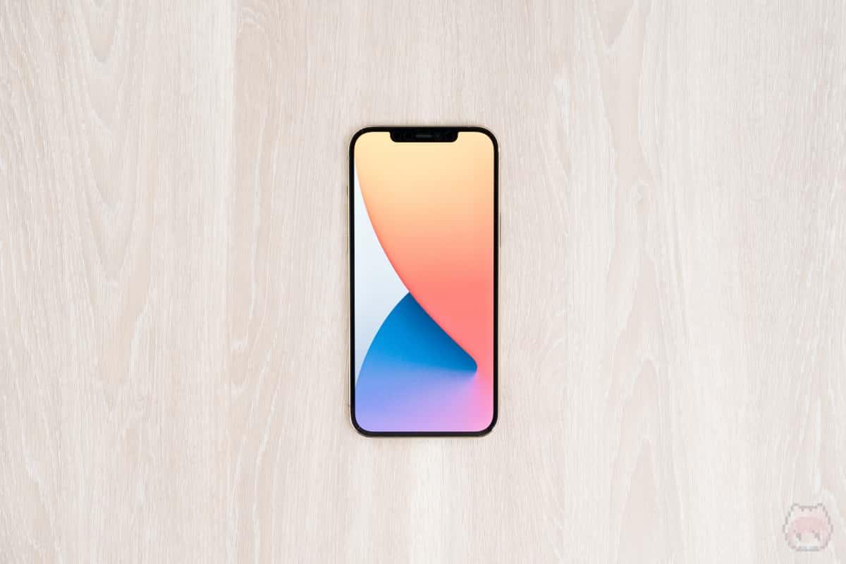 iPhone 12 Pro Max本体表面