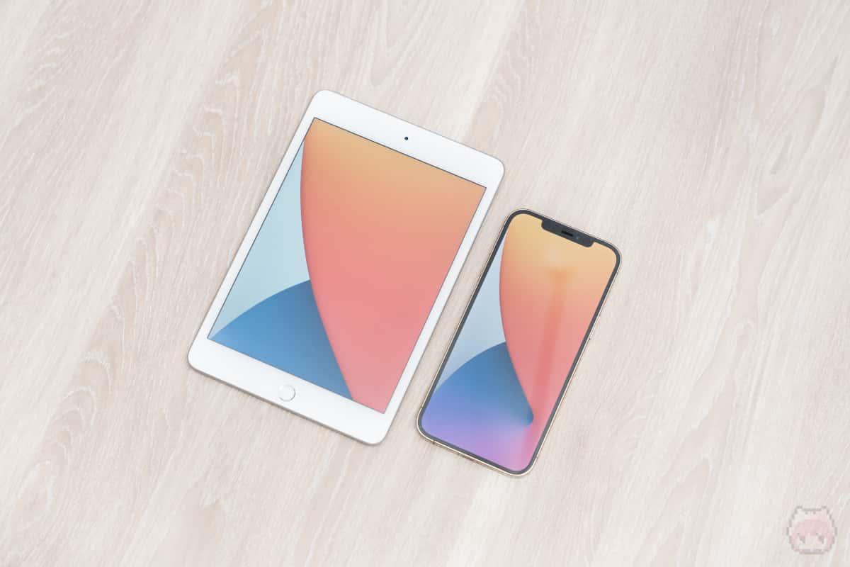 iPad mini(第5世代)と画面サイズ比較するとこんな感じ。