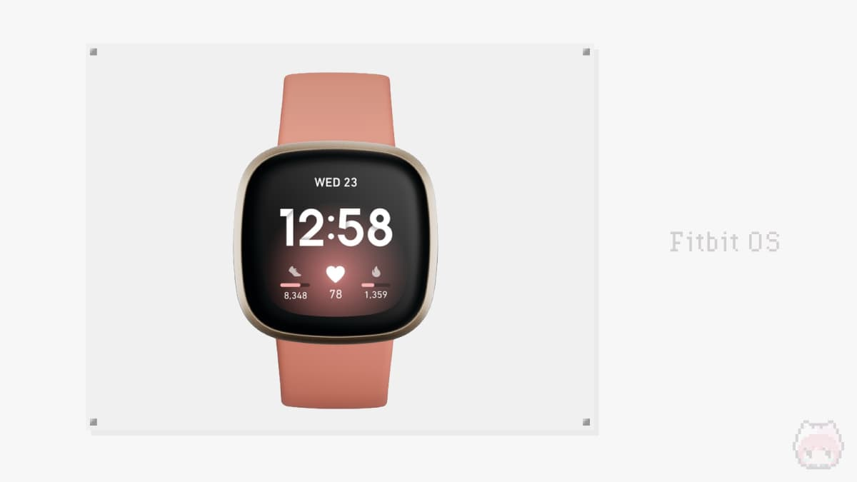 Fitbit OS - Fitbit