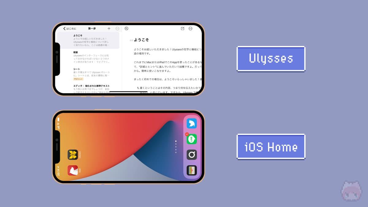 iPhone Max × ランドスケープモード